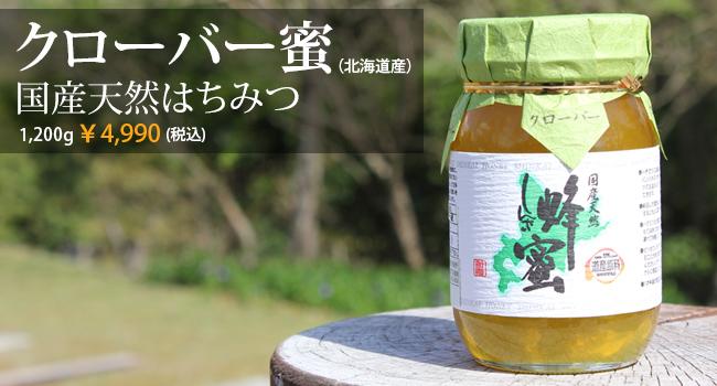 国産天然はちみつ クローバー蜜